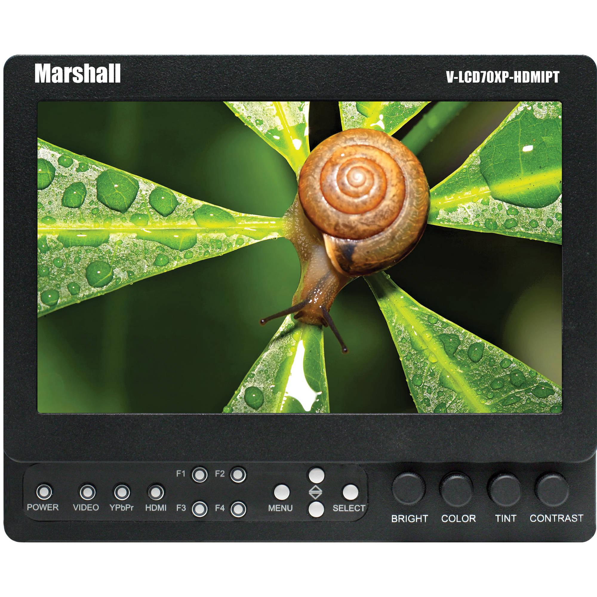 "Marshall Electronics 7"" High-resolution Field Monitor"