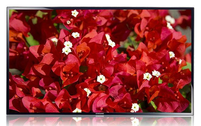 Toshiba ME55B 55-inch Edge LED Display Full HD